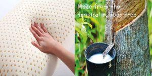 best latex foam pillow for back sleeping